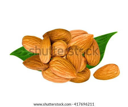 Fresh raw almonds with leaves isolated on white background. Vegetarian meal concept. Brown almonds with leaves. Group of fresh almond nuts. Almonds isolated on white.