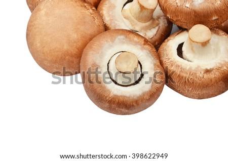 Fresh, raw and whole champignon (True mushroom) - stock photo