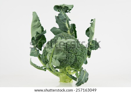 Fresh raw broccoli with leaves isolated on white - stock photo