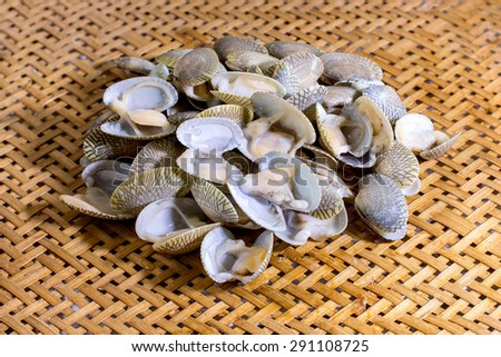 Fresh raw clams in the colander bamboo - stock photo