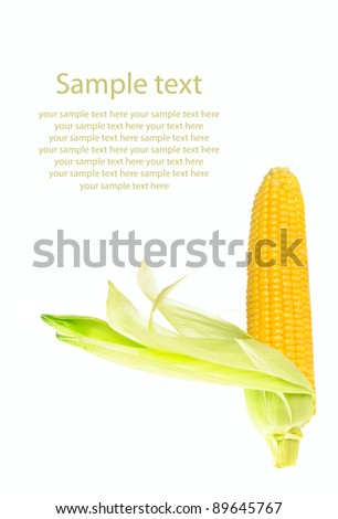 Fresh raw corn cob with leaves isolated on the white with sample text - stock photo
