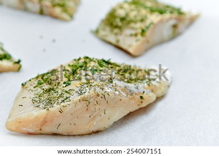 Fresh raw fish filet with herb and spices - stock photo