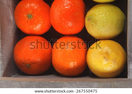 fresh raw lemon and mandarin packed in wooden box ready for transportation isolated over white background - stock photo