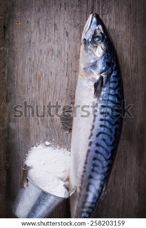 Fresh raw mackerel on aged  wooden  background. Selective focus. - stock photo