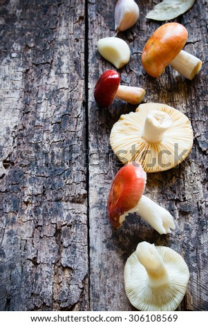 fresh raw mushrooms and garlic on wooden background selective focus - stock photo