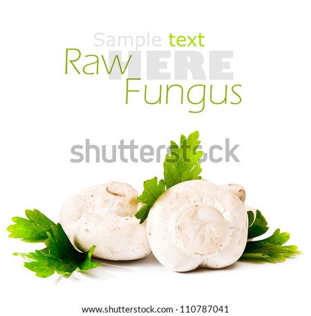 fresh raw  mushrooms  on a white background