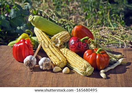 fresh raw organic vegetables - stock photo