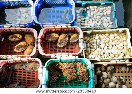 fresh raw seafood in colour boxes at a fish market - stock photo