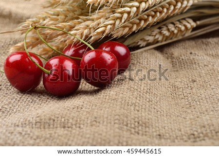 Fresh red and tasty cherries on jude background, with bunch of wheat behind them. Concept of healthy food, bio from countryside - stock photo