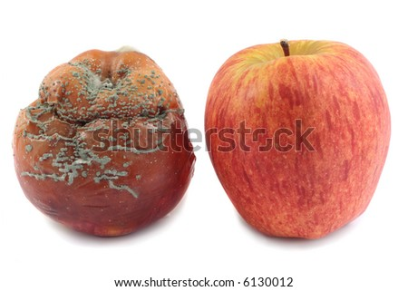 Fresh red apple and rotten apple, isolated on white background - stock photo