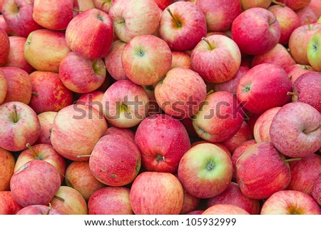 fresh red apples with drops of water - stock photo