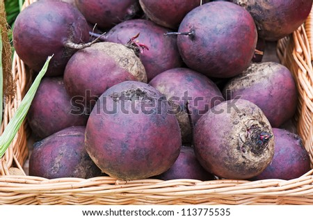 Fresh red beets in the basket - stock photo