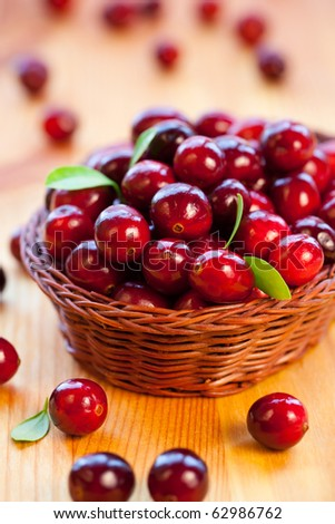 Fresh red cranberries with leaves in basket - stock photo