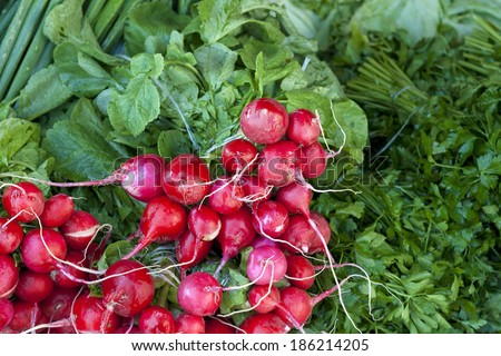 Fresh red radish stock heap with green in a street vegetable market - stock photo