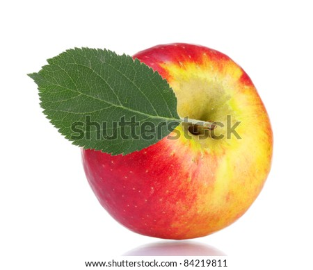 Fresh red ripe apple isolated on white - stock photo