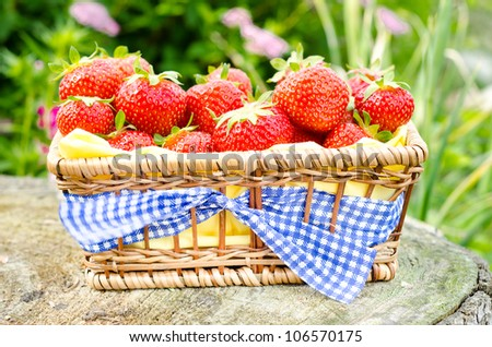 fresh red strawberries in a basket - stock photo