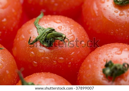 Fresh red tomato is lined beautifully.