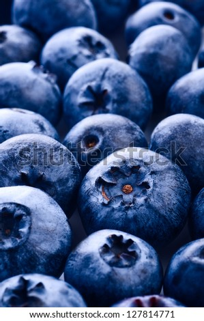 Fresh ripe bilberry close up