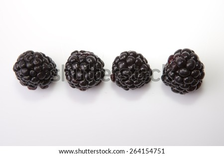 Fresh ripe blackberries in line. Isolated over on white background. Shot from above - stock photo