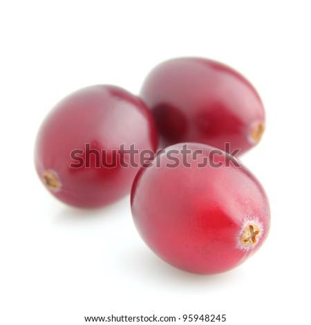 Fresh ripe cranberry - stock photo