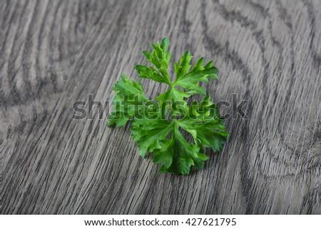 Fresh ripe green parsley leaves on wood background - stock photo