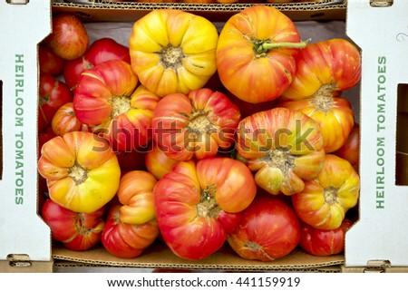 Fresh, Ripe, Organic Heirloom Tomatoes  - stock photo
