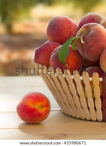 fresh ripe peaches in the basket on the wood table, sunny day, in the garden