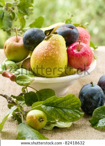 Fresh ripe pears, plums  and apples in bowl on natural  background. Selective focus - stock photo
