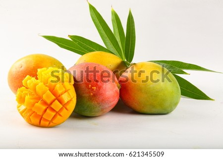 Fresh ripe raw mangoes over white background.