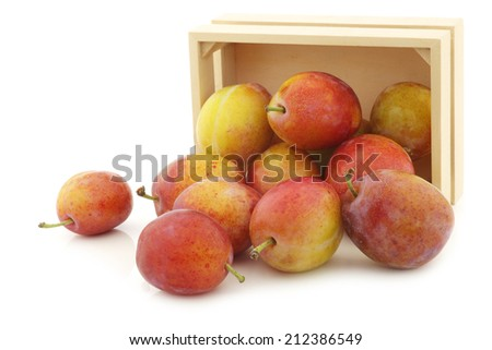 fresh ripe red and yellow plums in a wooden box on a white background - stock photo