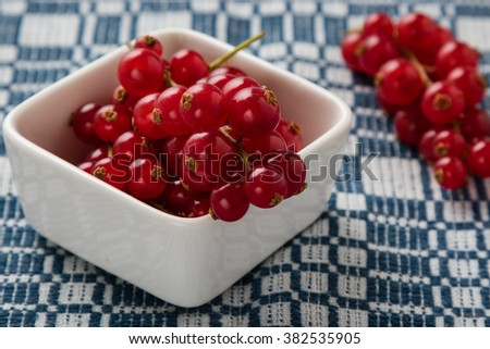 fresh ripe red currant fruit in white bowl