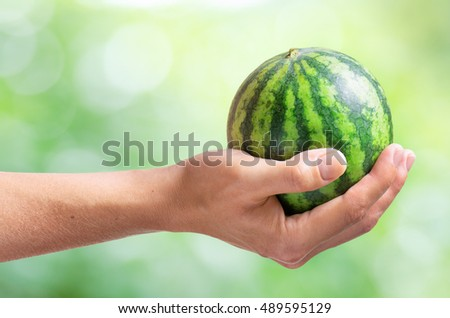 Fresh ripe small watermelon in hand of woman on nature background. Healthy eco food rich in vitamins and minerals. Sweet fruit is a popular product of organic farming.