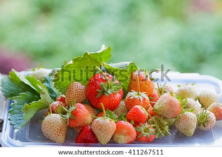 Fresh ripe strawberry on green background