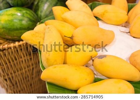 Fresh ripe thai yellow mango - stock photo
