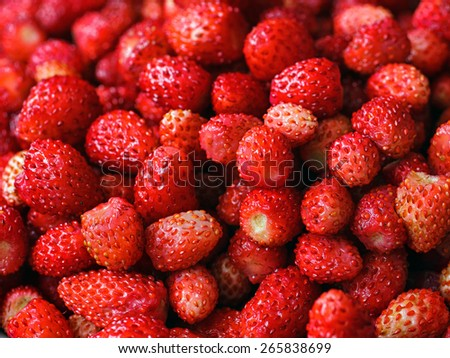 Fresh ripe wild strawberries. Natural ecological food - stock photo