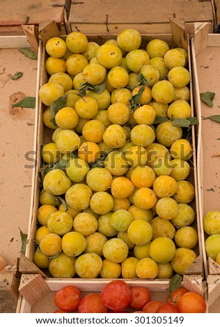 Fresh ripe yellow plums in a market. - stock photo