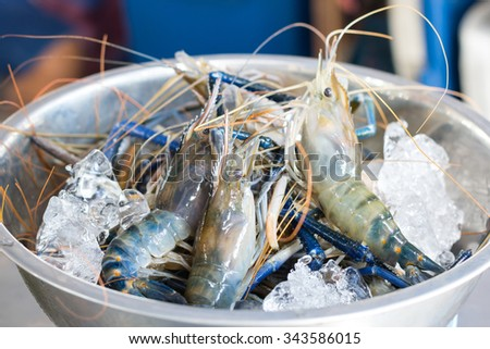 fresh river crayfish on ice in a bowl , prepare for cook - stock photo