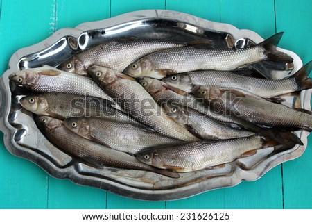 Fresh river fish - stock photo