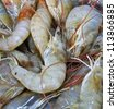 fresh river prawn from the market - stock photo