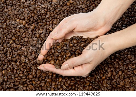 Fresh roasted coffee beans in cupped woman hands - stock photo