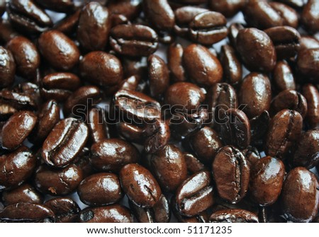 Fresh roasted coffee been background - stock photo