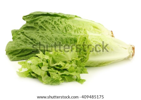 fresh roman lettuce and a cut one on a white background - stock photo