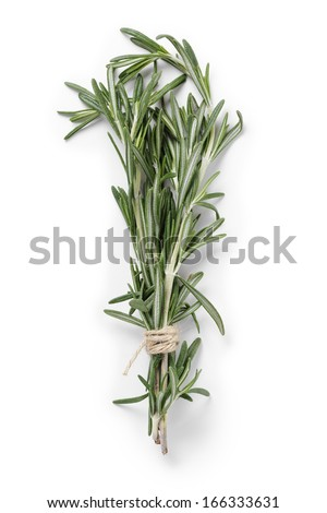 fresh rosemary bunch, isolated on white background - stock photo