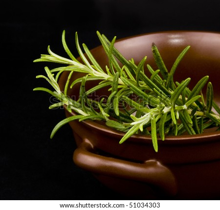 Fresh rosemary in ceramic bowl on black background - stock photo