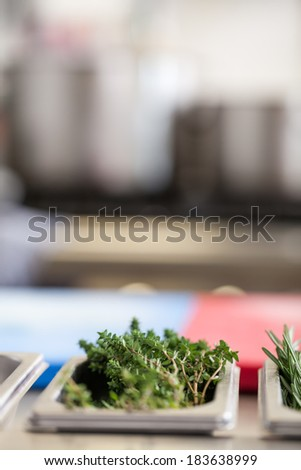 Fresh rosemary sprigs in a stainless steel tray on a commercial kitchen counter ready for use as a garnish and seasoning in cooking - stock photo