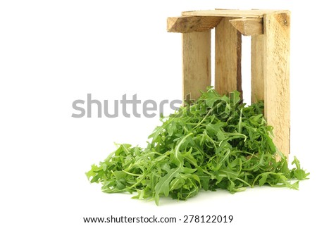 fresh rucola leaves (Eruca sativa) in a wooden box on a white background - stock photo