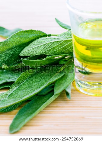 Fresh sage put on wooden board. - Spices ingredient with macro shot - stock photo