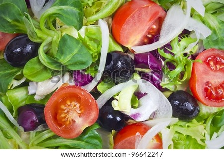 fresh salad background - stock photo