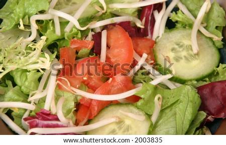 Fresh salad ingredients close-up - stock photo