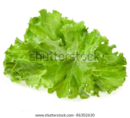 Fresh salad lettuce close up , top view, isolated on white - stock photo